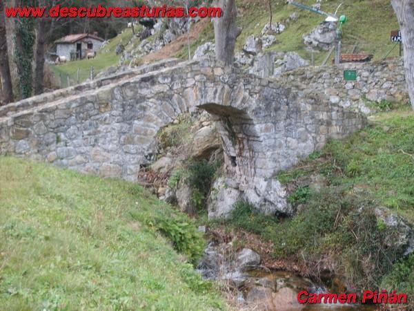 Puente Poo (Ridon)